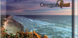 Postcard Series 15: Oregon, USA